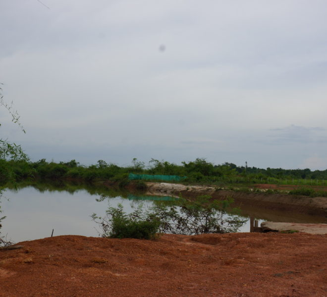 Agriculture Land for sale in laos8