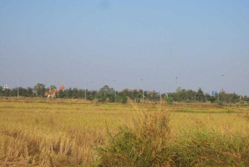 Agriculfure  Land sale (1)