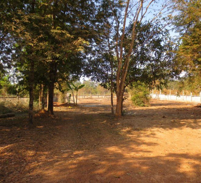Agriculturc   Land for sale (1)