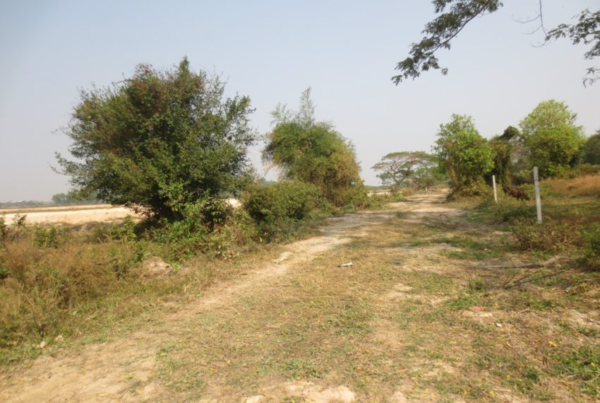 Agriculture For Sale (1)