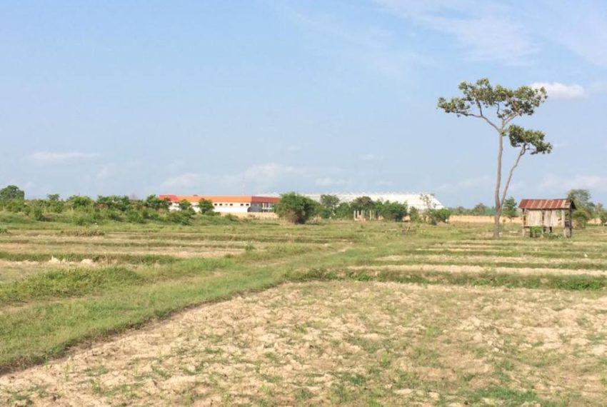 Agriculture Land (3)