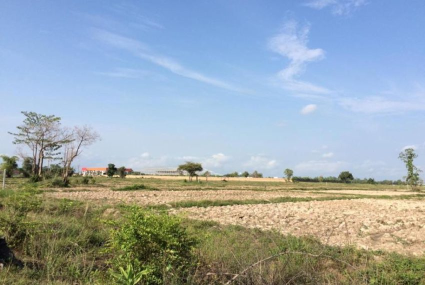 Agriculture Land (4)