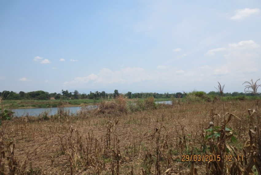Agriculture Land (5)