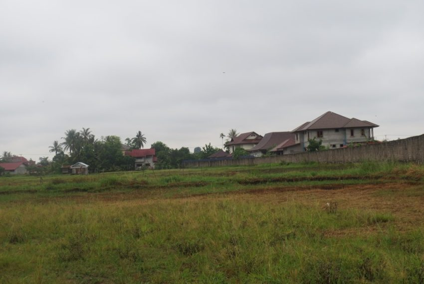 Agriculture  Land (7)