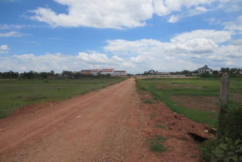 Agriculture land For Sale (1)
