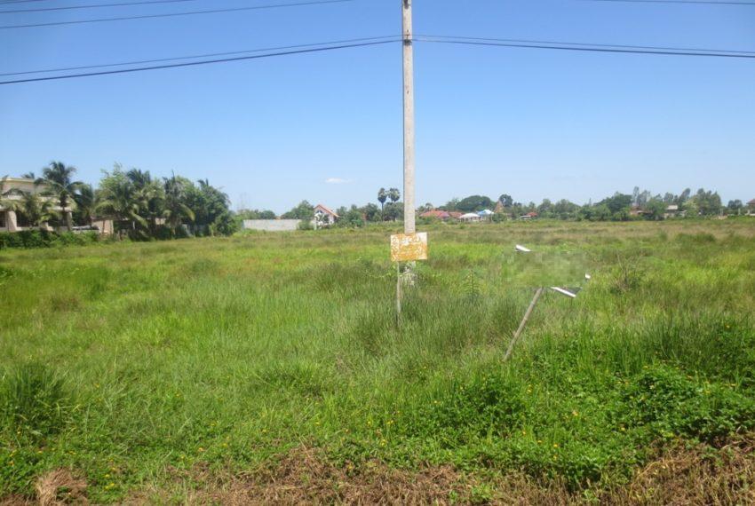 Agricuture land (7)