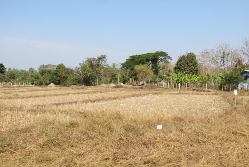 Agriulture  Land (1)