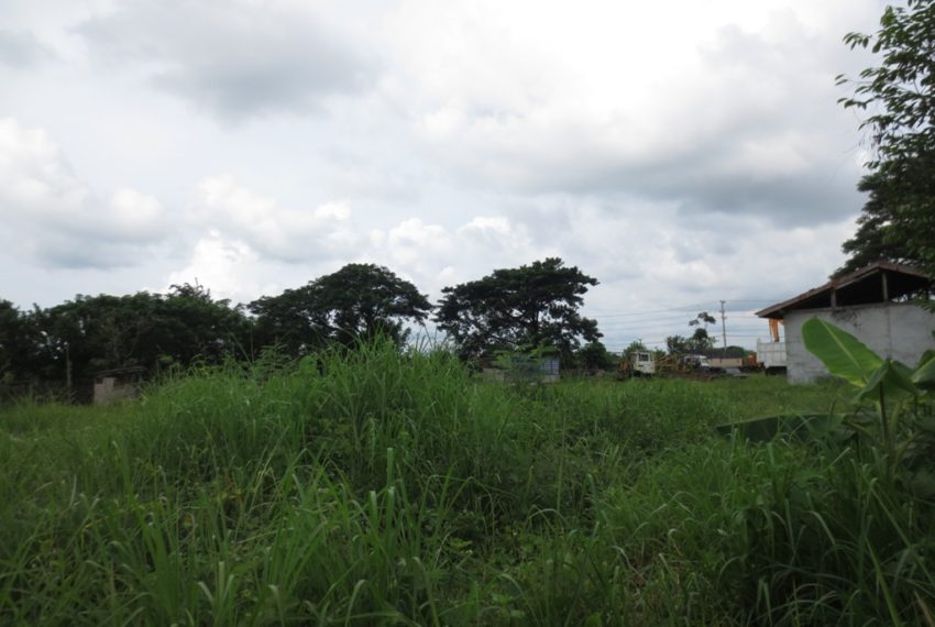 Commercial Land (7)