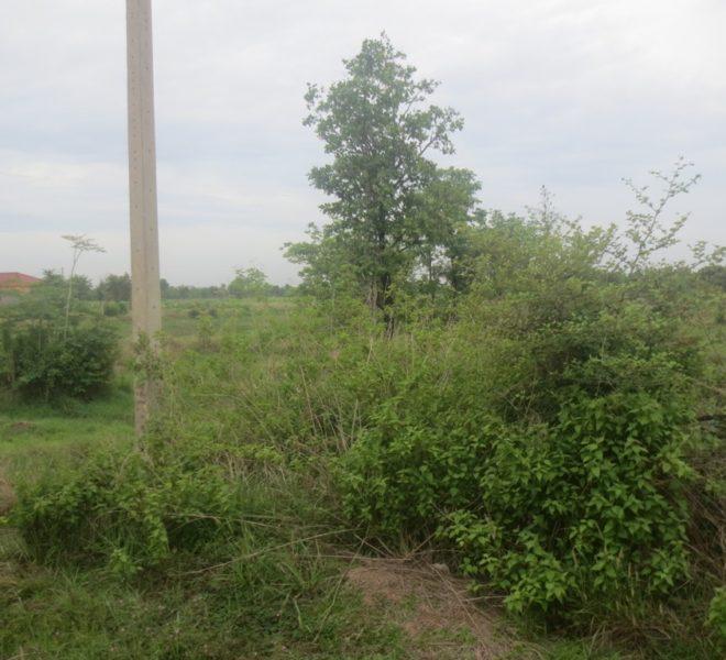 Indutry Land (1)