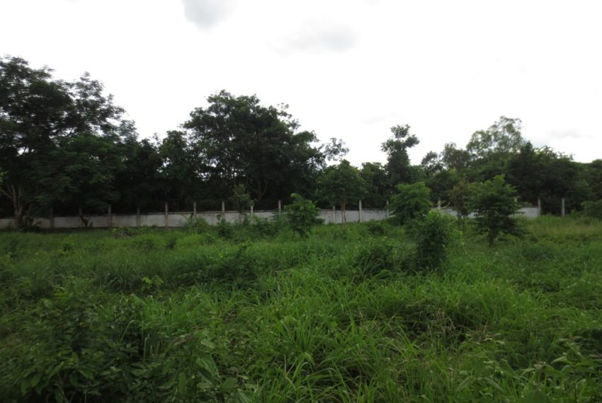 Land for Sale (11)
