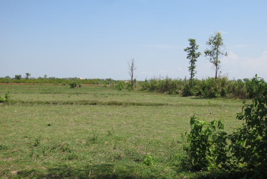 Land for Sale (4)