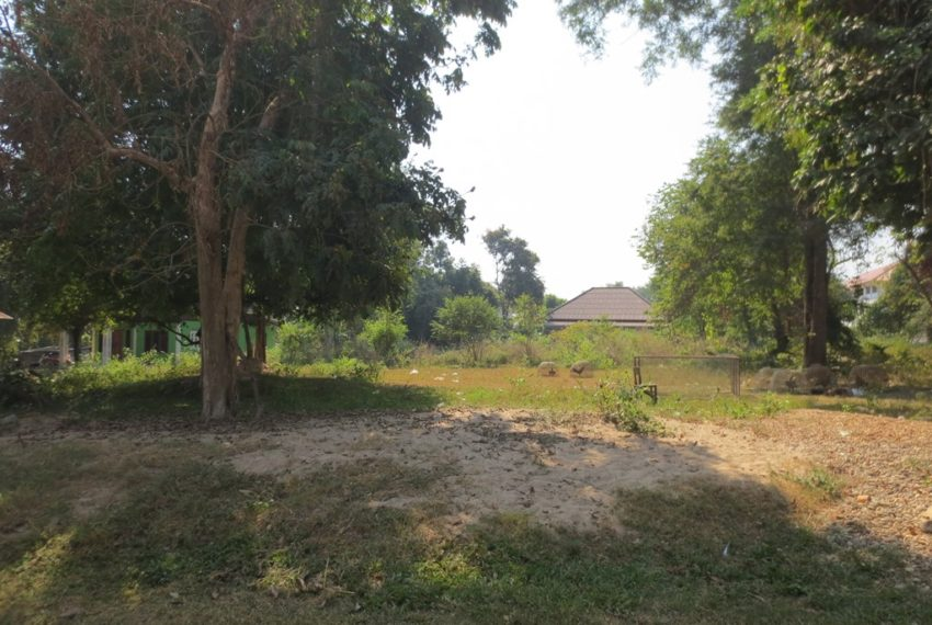 Land for rent(1)