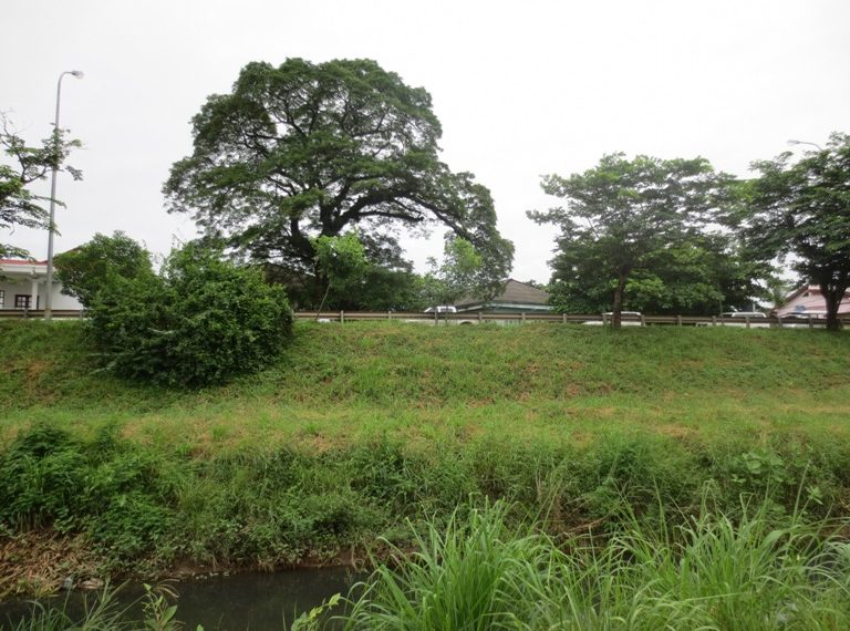Land for sale(2)