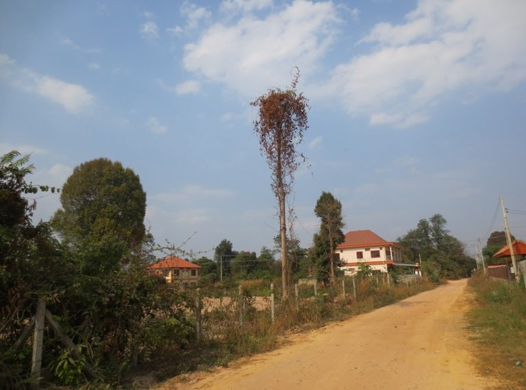 Residential For Sale  (1)