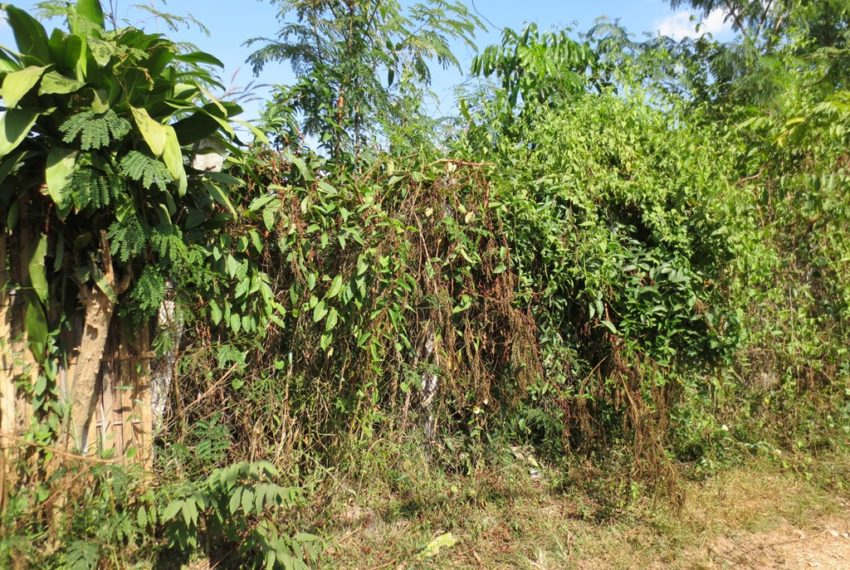 Residential land For Sale (8)